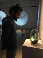 Maru Garcia vacuoles: bioremediating cultures11