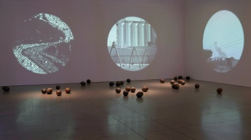 Maru Garcia vacuoles: bioremediating cultures5